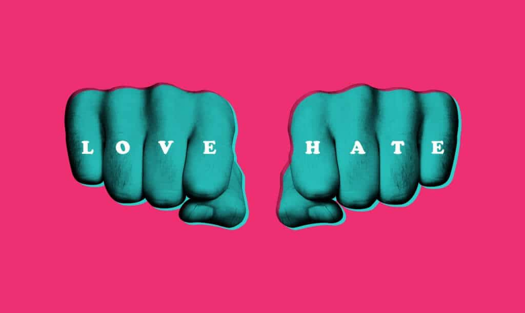 love hate, polarising your brand